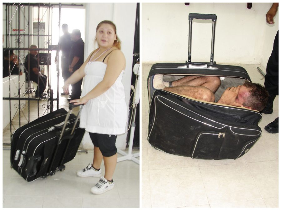 нелегалы в чемодане