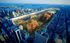Центральный парк. Дизайнерский проект