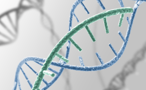 5 самых редких генетических отклонений