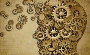 Интересные факты из психологии