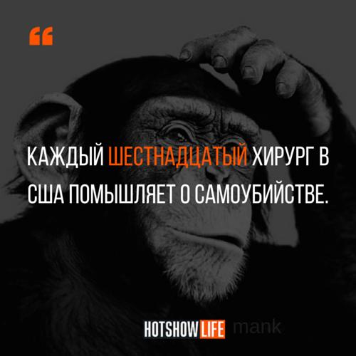 манк, цитаты, hotshowlife