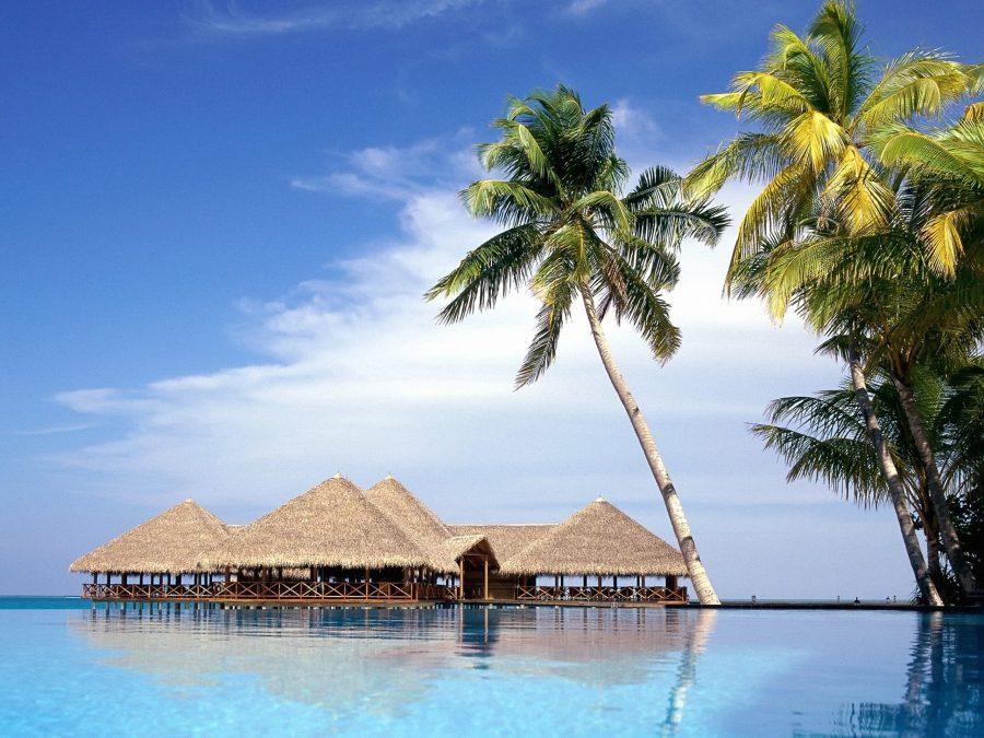 развлечения на островах. Мальдивы