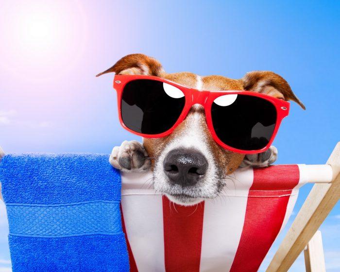 Хитрости приятного отпуска: правила экономного отдыха