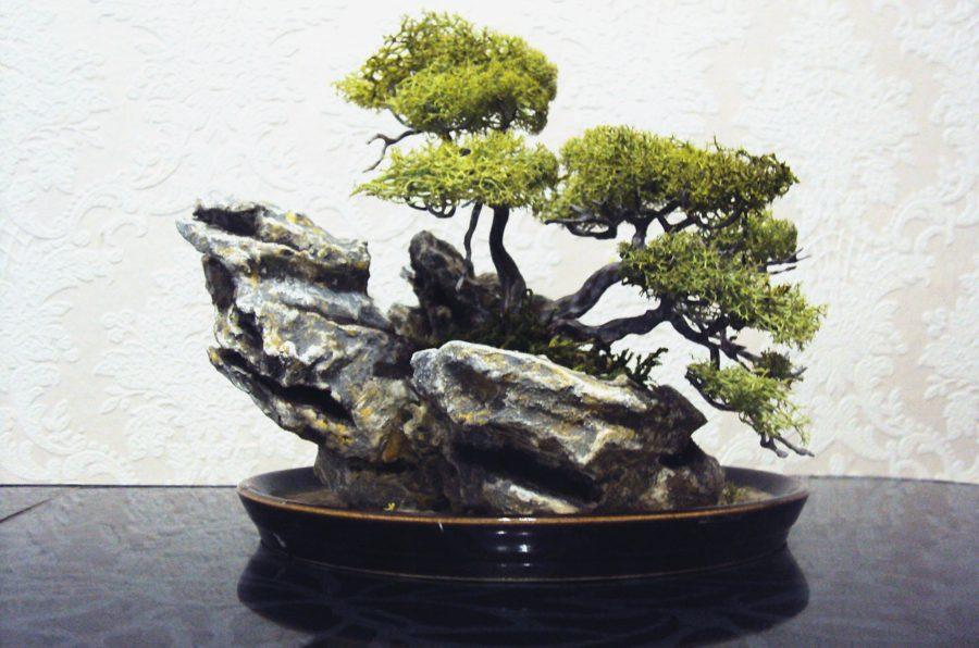 исидзуки