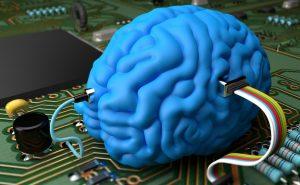 человеческией мозг