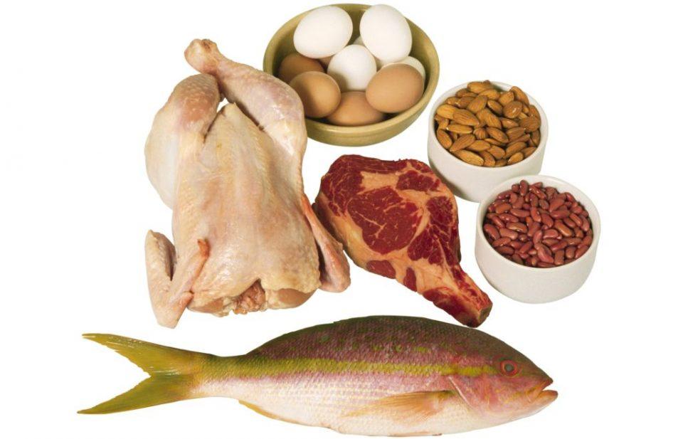 продукты. белковая пища