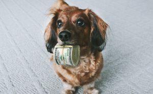 Как накопить деньги на мечту, отдых, желаемую вещь?
