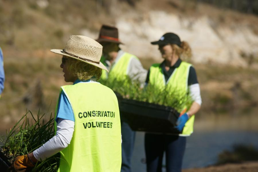 «Conservation Volunteers»2