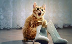 значение свадебных обрядов