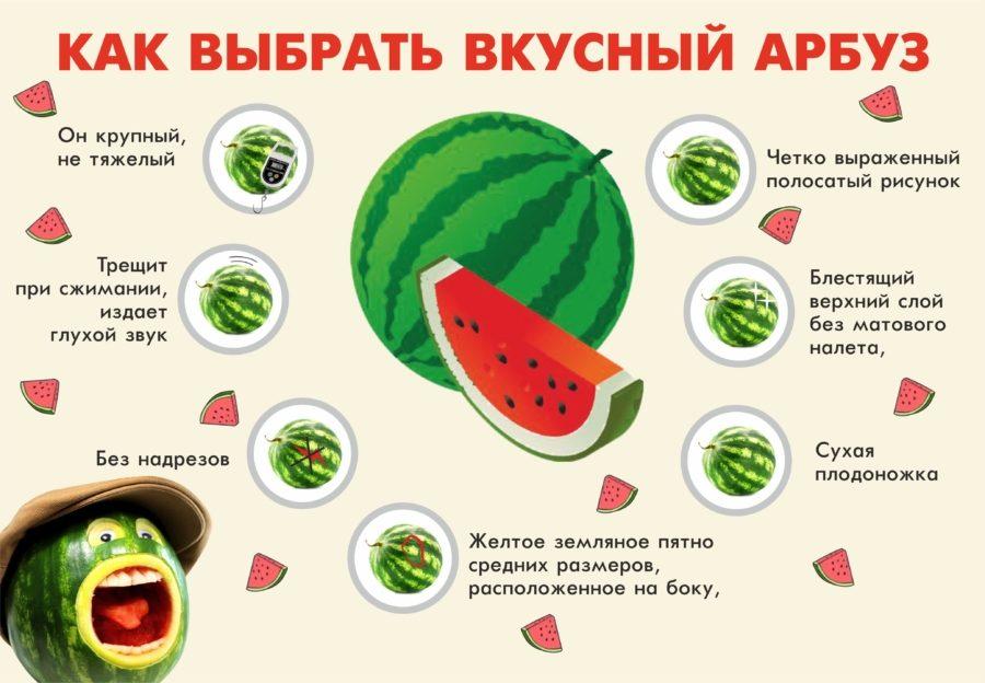 Как выбрать вкусный и безвредный арбуз