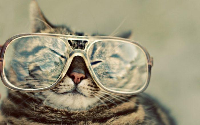 Очки, краткая история аксессуара