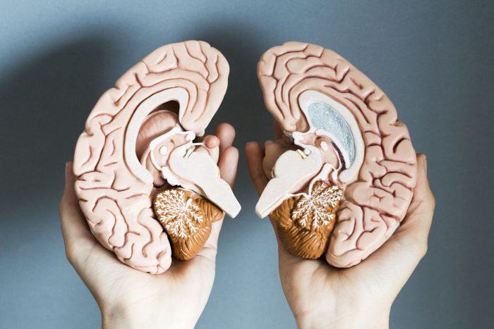 Аналитический склад ума: 5 советов по развитию