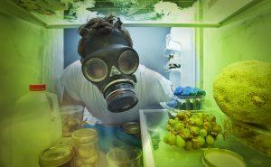 Запах в холодильнике, быстро избавляемся от вони