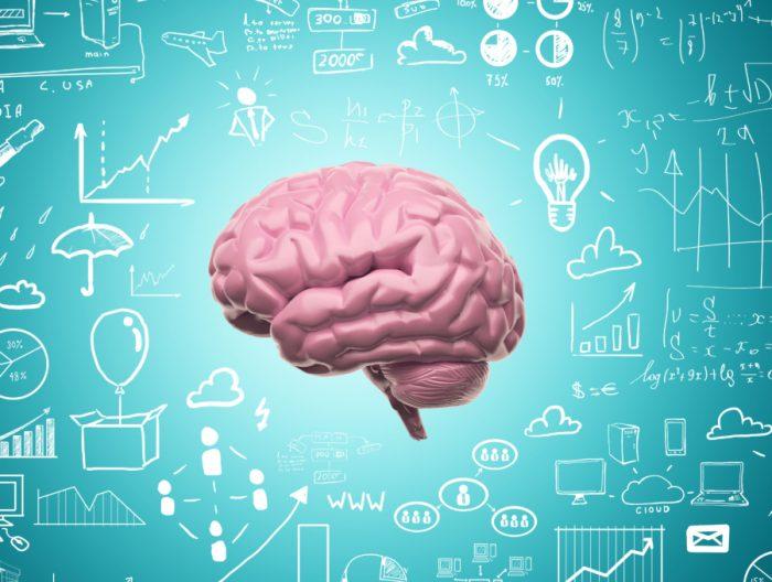 Мозг человека, развеиваем распространенные мифы