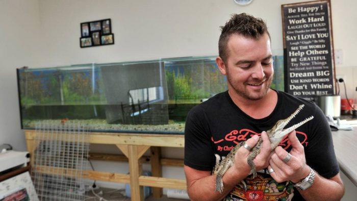 Домашний крокодил — экзотический питомец у вас дома