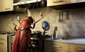 Как избавиться от тараканов в квартире? 5 рабочих способов