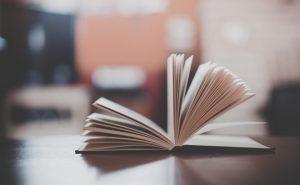 Что такое эпитет в литературе?