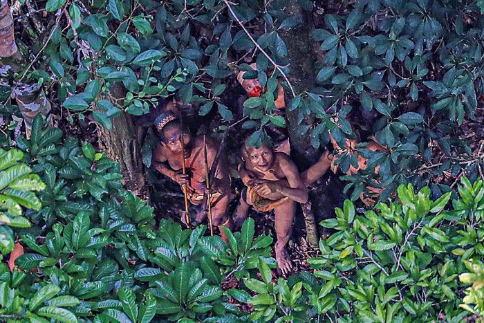 Удивительная находка изолированного племени в лесах Бразилии, которое живет как 2000 лет назад