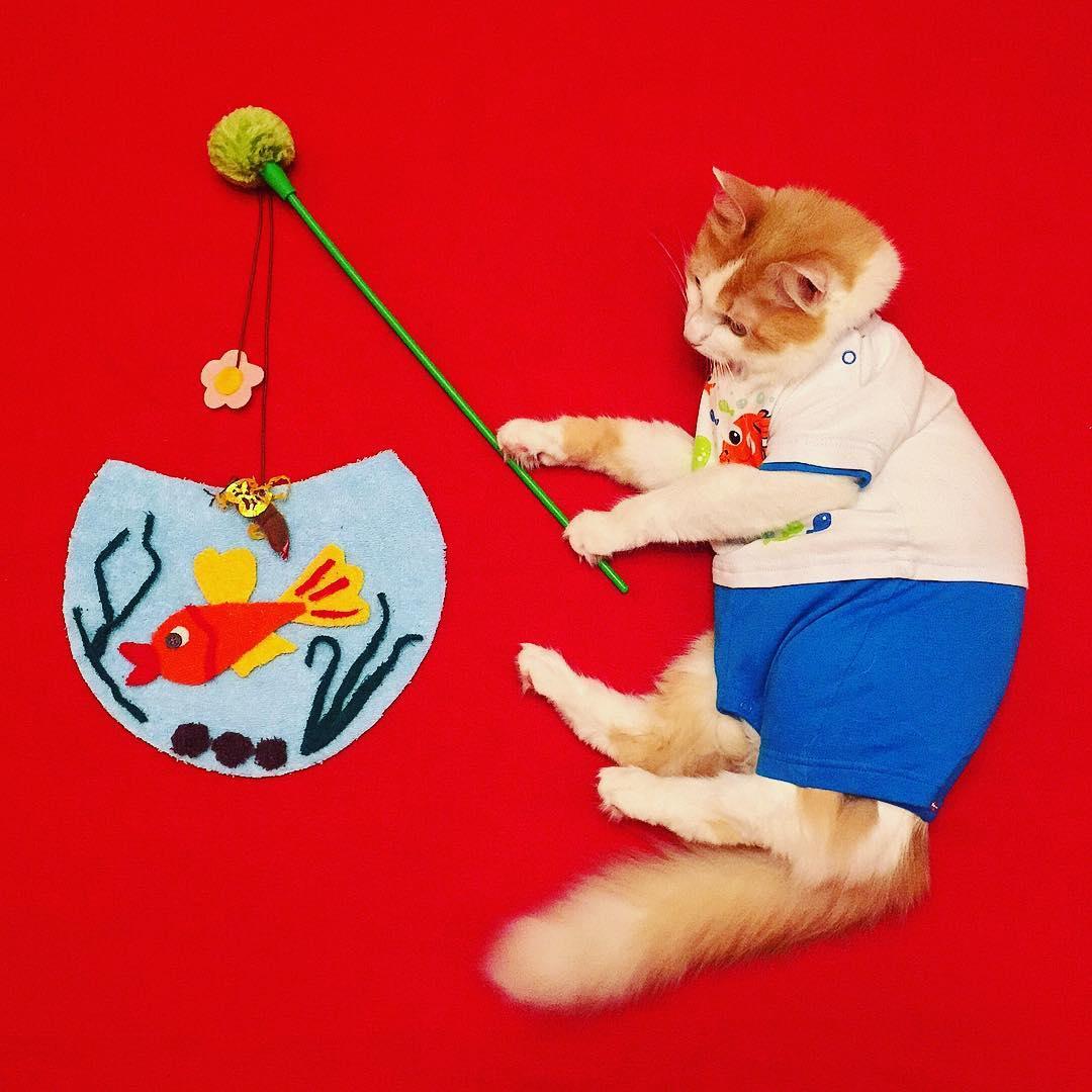 Кот кузя