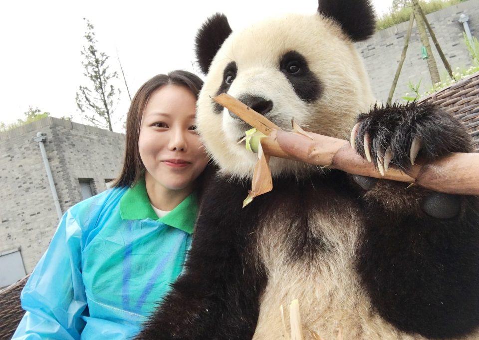 Панда селфи