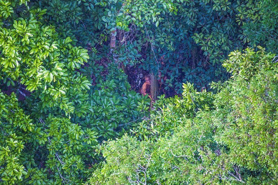 племени в лесах Бразилии
