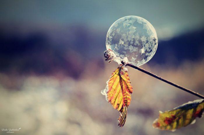Уникальные фото мыльных пузырей на морозе, вы должны это видеть