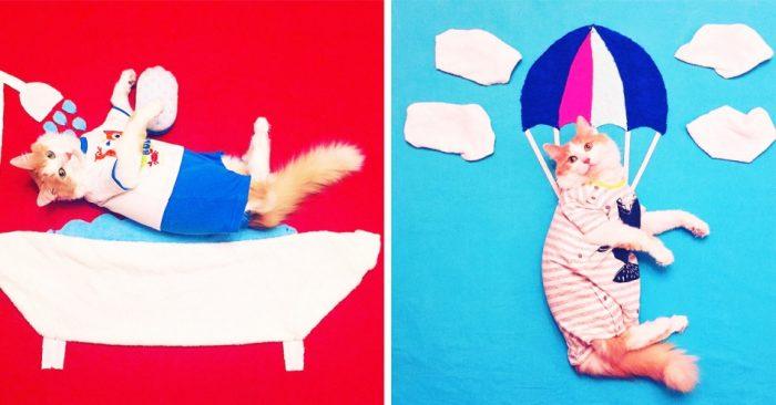Встречайте Кузю — настоящего кота-авантюриста из России