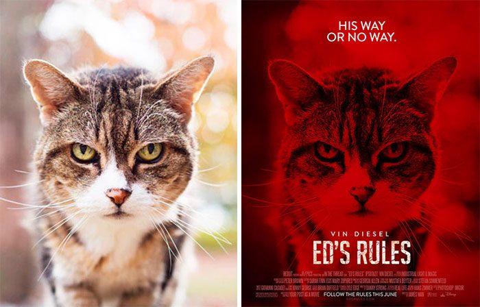 Он превращает фотографии из Интернета в постеры к фильмам