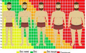 Индекс массы тела: как рассчитать по формуле и таблице?